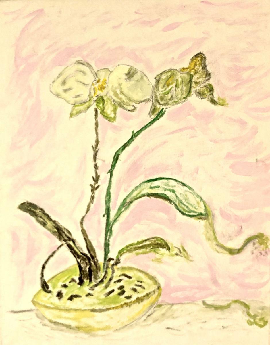 "Francis U. ""Cochran Butterfly Orchid"" 16x20"